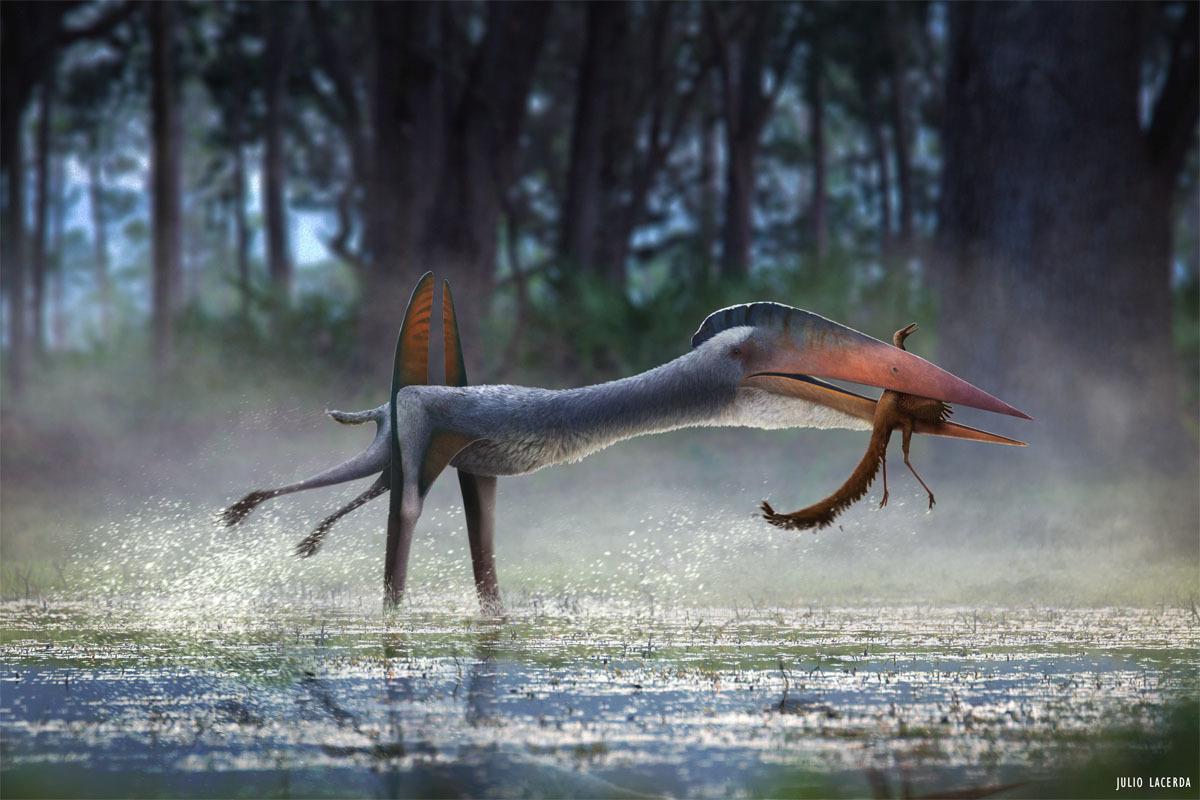 "Hatzegopteryx hunting on the ground, a behavior dubbed ""terrestrial stalking"""
