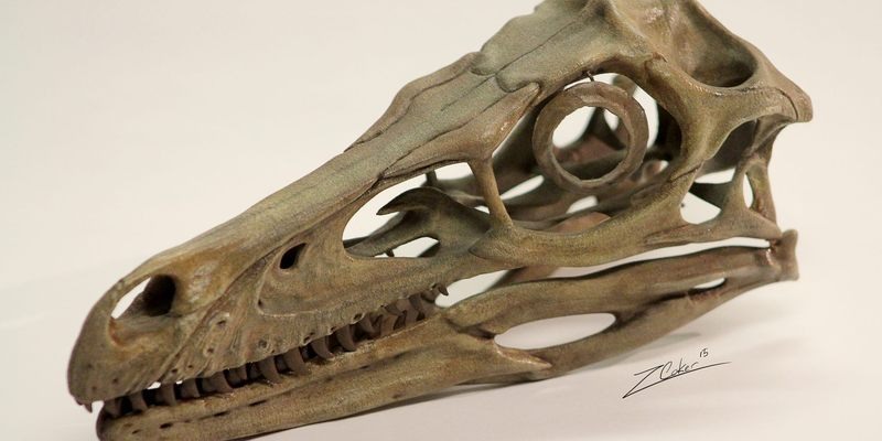 Raptor Jesus | Uncyclopedia | FANDOM powered by Wikia |Velociraptor Skull Front