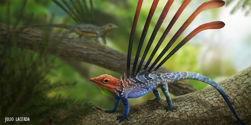 The Odd Little Reptiles Of The Triassic Forests Earth