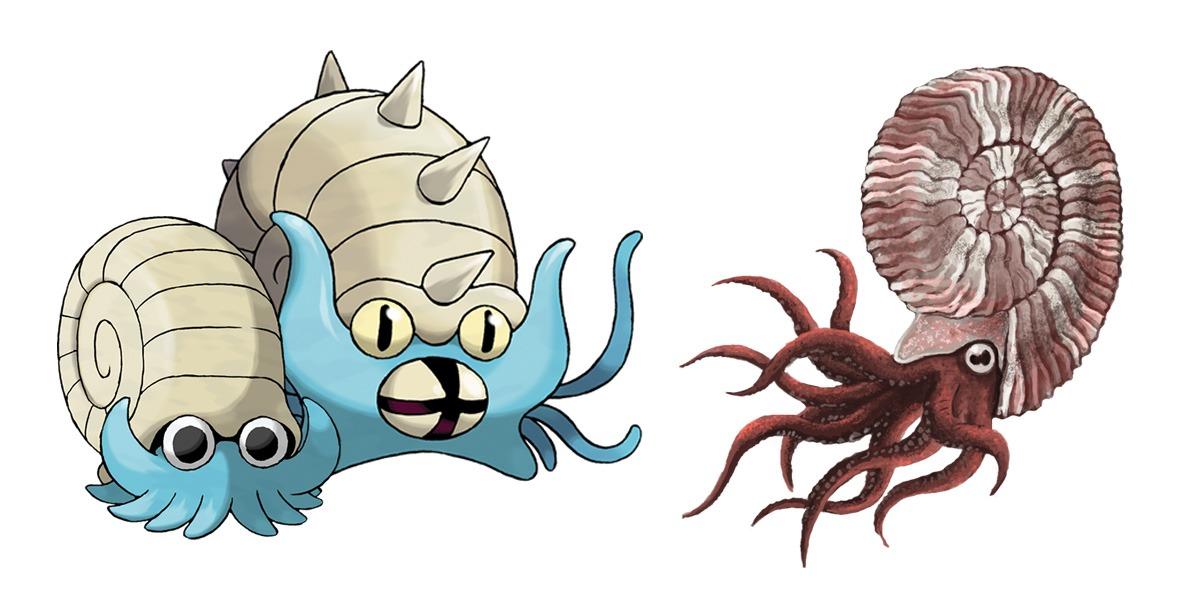 Omanyte and Omastar: Ammonites