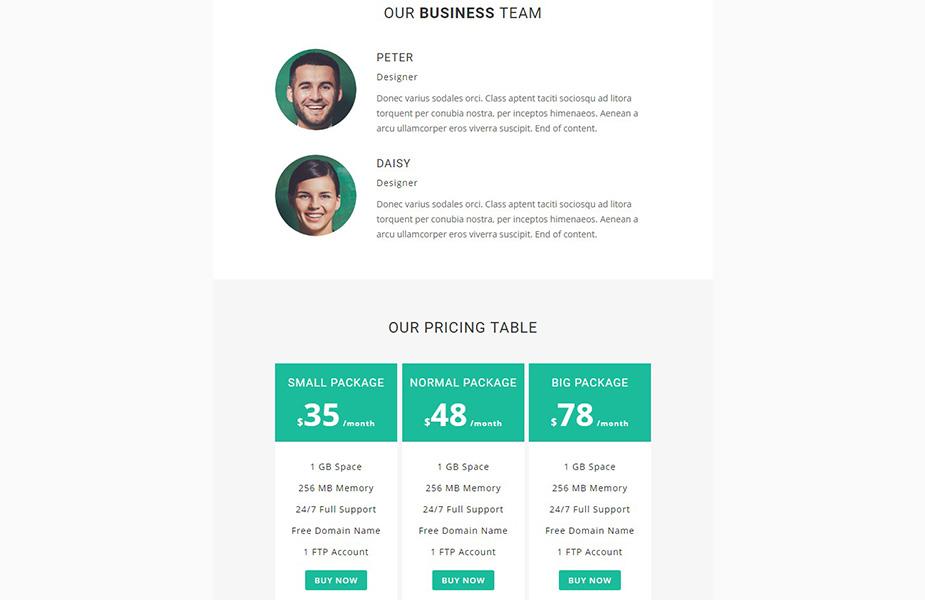 Business - Responsive Newsletter Template