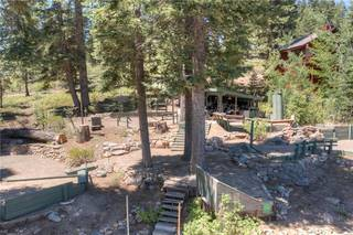 Listing Image 12 for 969 Dorcey Drive, Incline Village, NV 89451