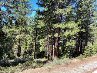 Listing Image 3 for 727 Kelly Drive, Incline Village, NV 89451