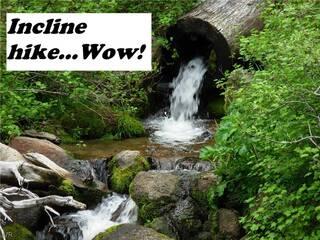 Listing Image 29 for 519 Dale Drive, Incline Village, NV 89451