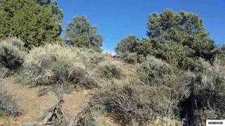 Listing Image 11 for 0 Toll Road, Reno, NV 89521
