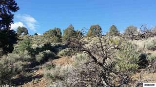 Listing Image 12 for 0 Toll Road, Reno, NV 89521