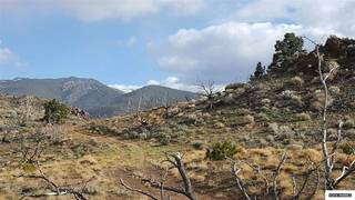 Listing Image 5 for 0 Toll Road, Reno, NV 89521