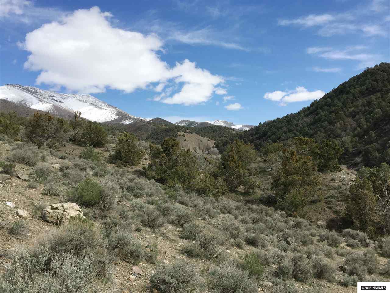 Image for APN 007-700-02, Battle Mountain, NV 89820