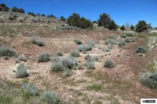 Listing Image 7 for 15750 Cheryl Lane, Reno, NV 89521