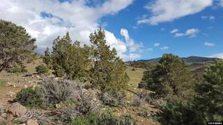 Listing Image 11 for 0 Toll Road, Reno, NV 89511