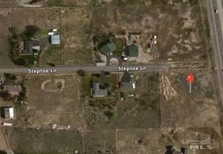 Listing Image 5 for 399 STEPTOE LANE, Carson City, NV 89704