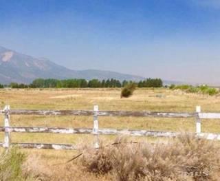Listing Image 6 for 399 STEPTOE LANE, Carson City, NV 89704