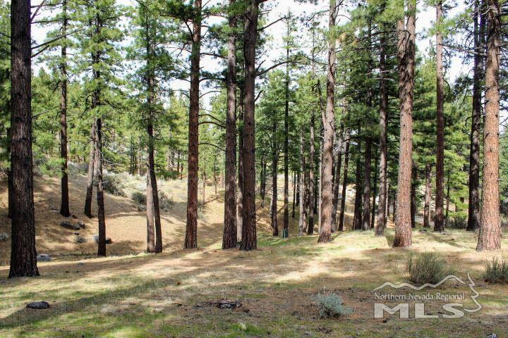 Image for 725 Kelly Canyon, Washoe Valley, NV 89704-8541