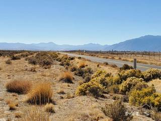 Listing Image 18 for 1112 Airport Rd., Minden, NV 89423-8611