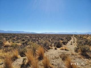 Listing Image 5 for 1112 Airport Rd., Minden, NV 89423-8611