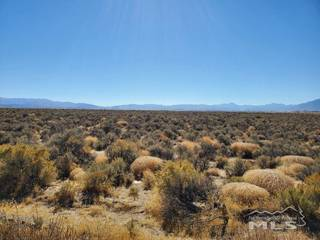 Listing Image 8 for 1112 Airport Rd., Minden, NV 89423-8611