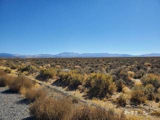 Listing Image 9 for 1112 Airport Rd., Minden, NV 89423-8611
