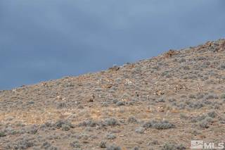 Listing Image 20 for The Bonanza King Mine, Lovelock, NV 00000-0000
