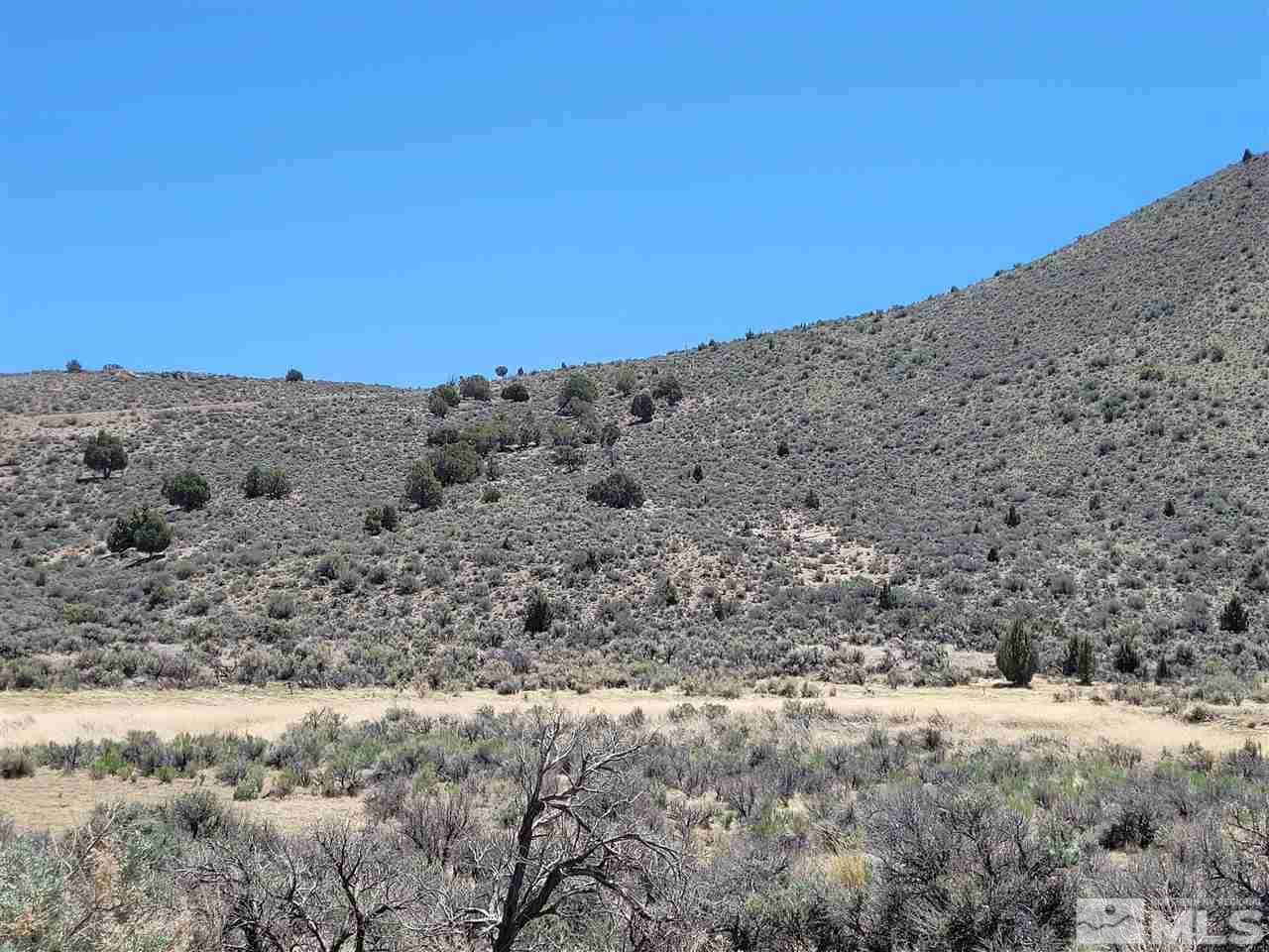 Image for 0 Chokecherry APN 078-271-21, Reno, NV 89508