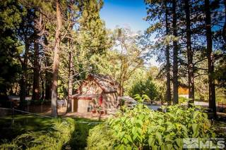 Listing Image 21 for 4045 Old US Hwy 395, Washoe Valley, NV 89704