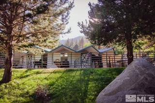 Listing Image 22 for 4045 Old US Hwy 395, Washoe Valley, NV 89704