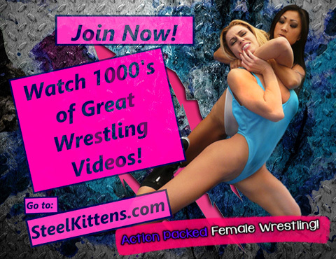 steel kittens wrestling
