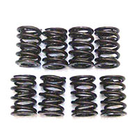 Valve Spring Set, Dual, high-lift, race only