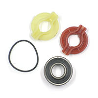 Bearing Kit, Alternator