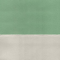 Porcelain Green / Dove Grey