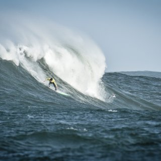 Mavericks organizers go bankrupt, this year's contest in doubt