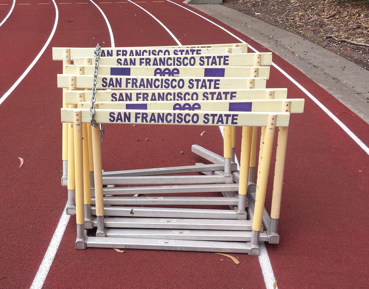 SF State University