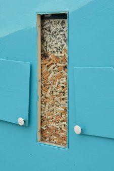 Cigarette butts cleanup Ocean Beach