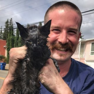 Grease-covered kitten rescued from fire truck