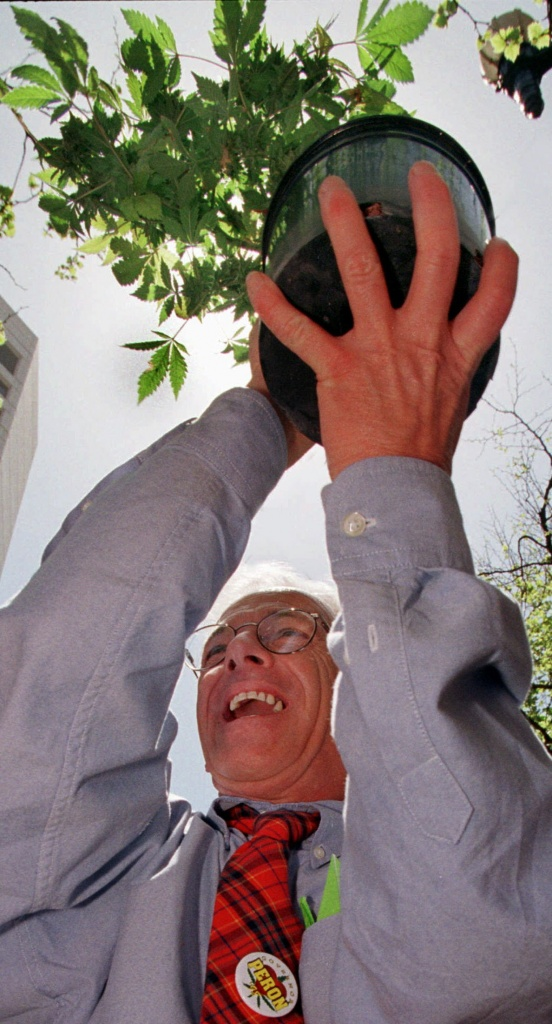 Founder of the Cannabis Cultivators' Club and gubernatorial candidate Dennis Peron, raises a marijuana plant after he was evicted from the Cannabis Club by the San Francisco Sheriff Monday, April 20, 1998, in San Francisco. The club plans to re-open by 5 p.m., under new ownership and a new name. (AP Photo/Ben Margot)