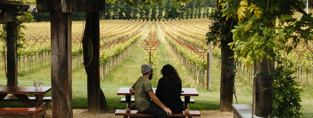 Navarro, aromatic, white wine, Alsatian Whites, vineyard, Navarro, winery, tasting room, outdoors, Philo, Anderson Valley, California, The Press