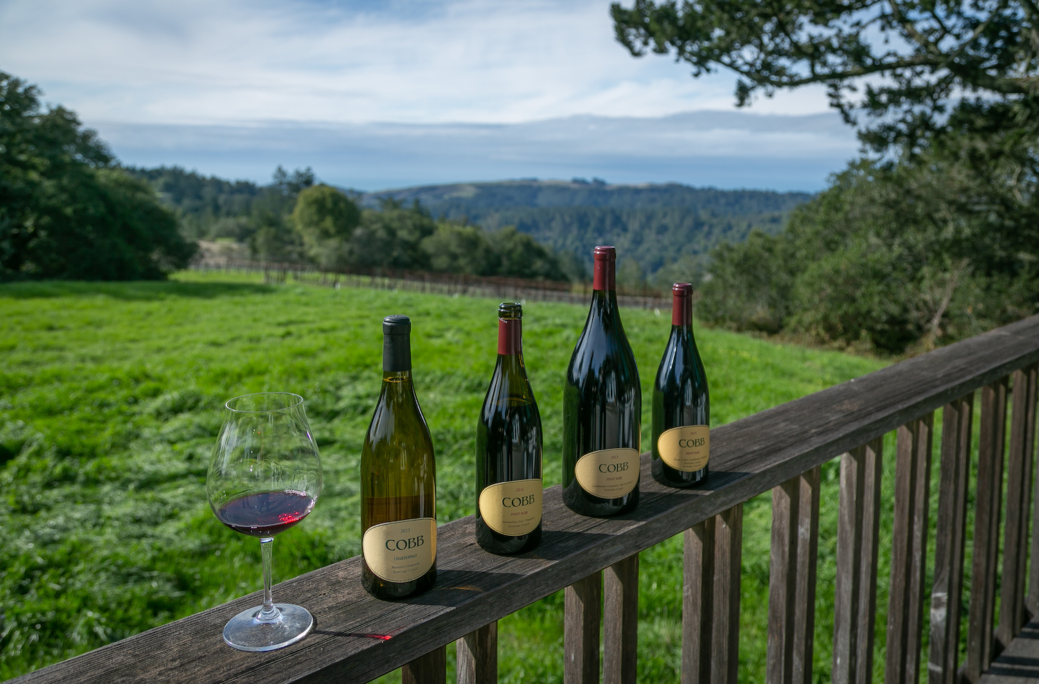 Cobb, Cobb winery, Occidental winery, Pinto Noir, Pinot Noir tasting, The Press