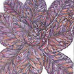 Lettuce: Red Orach - Other Greens image