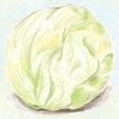 Lettuce: Iceberg Lettuce image