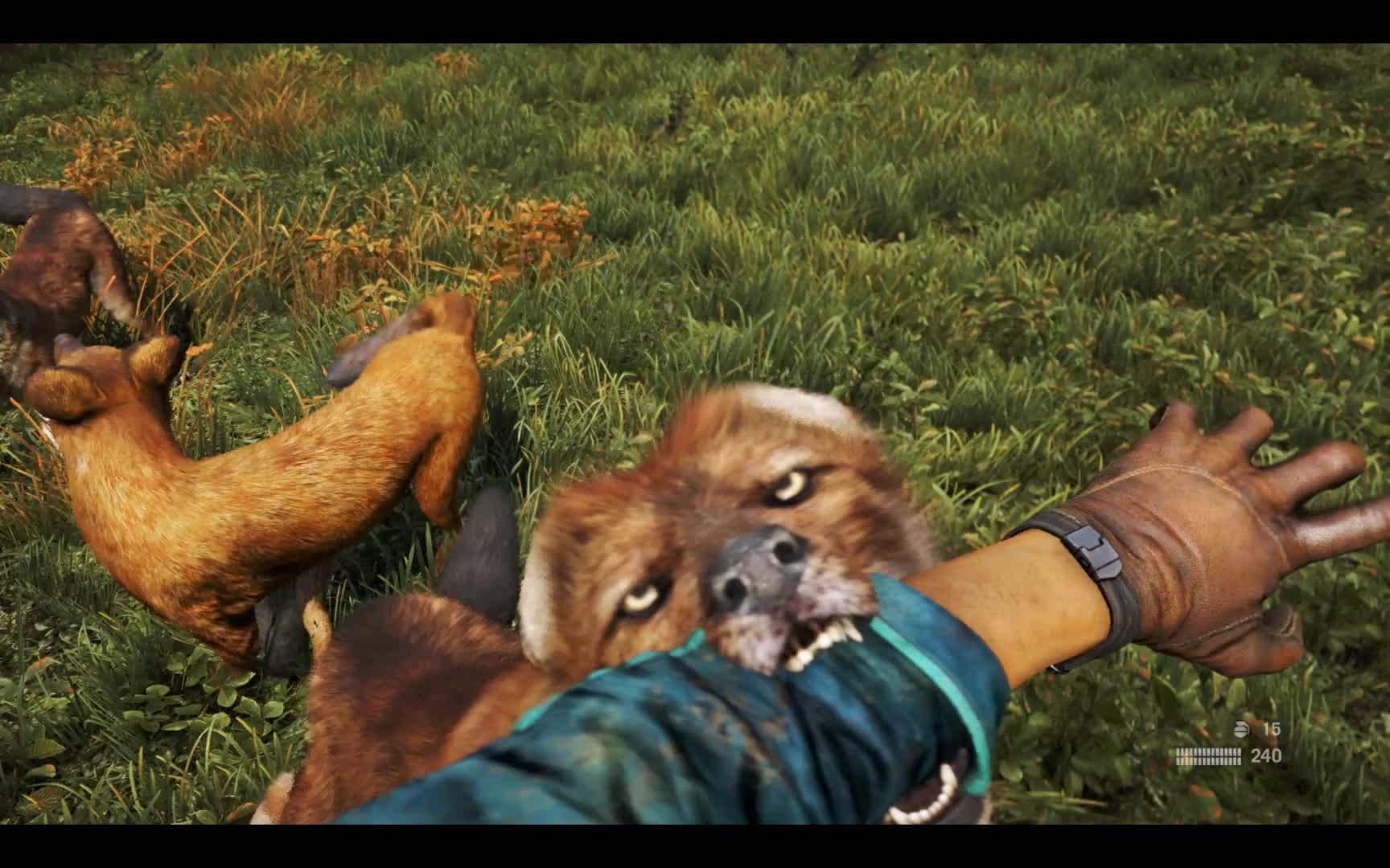 Far Cry 4: Tracking Down Kyrat's Most Dangerous Animal | Shacknews