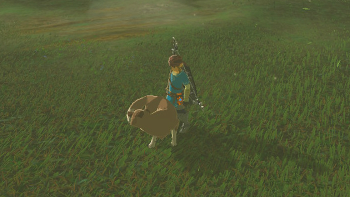Can You Get Pet Dog Breath Of The Wild