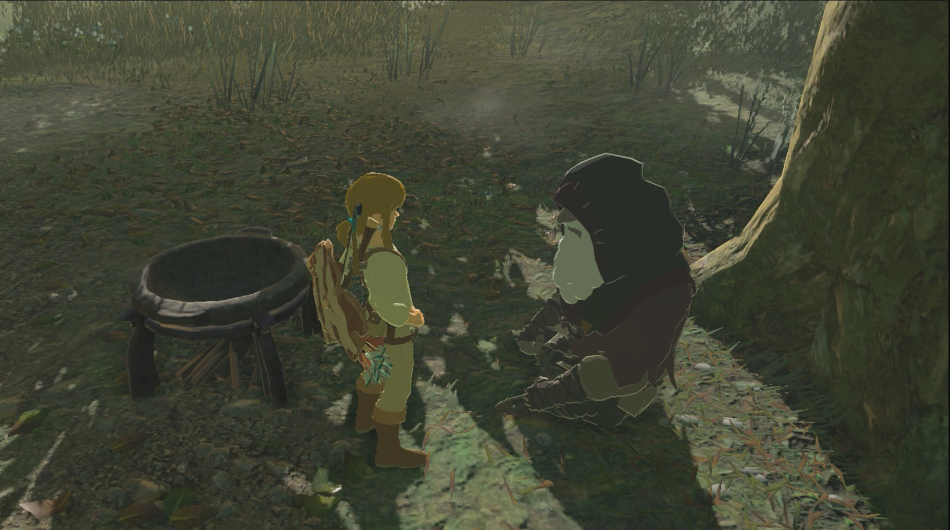 Cooking Tips for Food and Elixirs in The Legend of Zelda