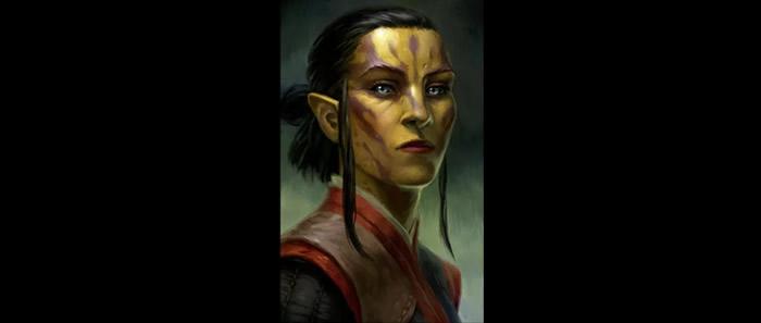 Companions in Pillars of Eternity 2: Deadfire