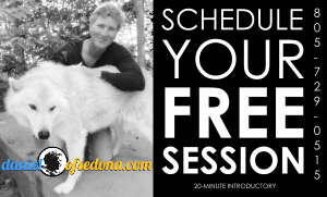 schedulefreesession-daniel-of-sedona