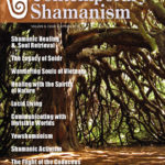 Contemporary Shamanism: Spring 2013