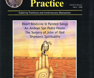 Journal of Shamanic Practice: Spring 2009