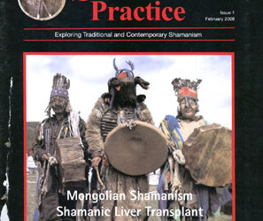 Journal of Shamanic Practice: Spring 2008