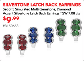 Silvertone Latch Back Earrings
