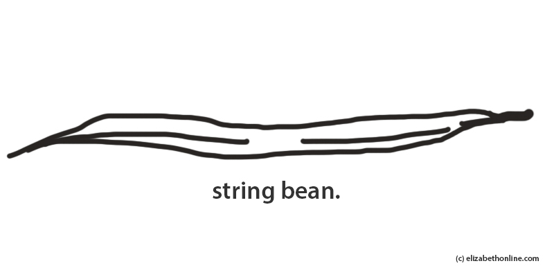 String bean medium 1504