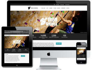 Indoor Rock Climbing and Fitness Gym Website Design