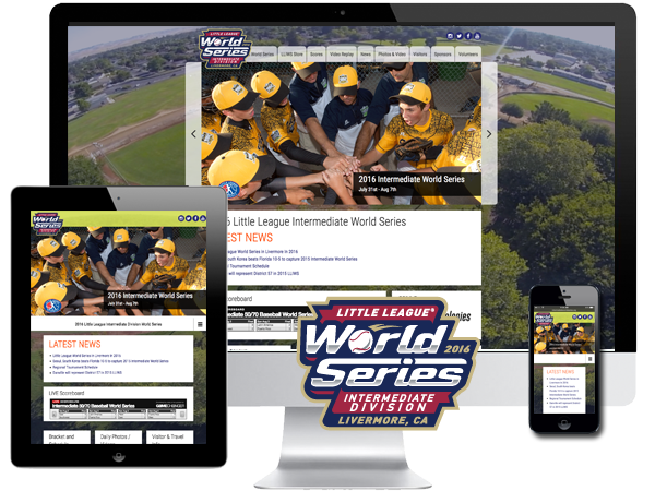 Youth Baseball Website Design